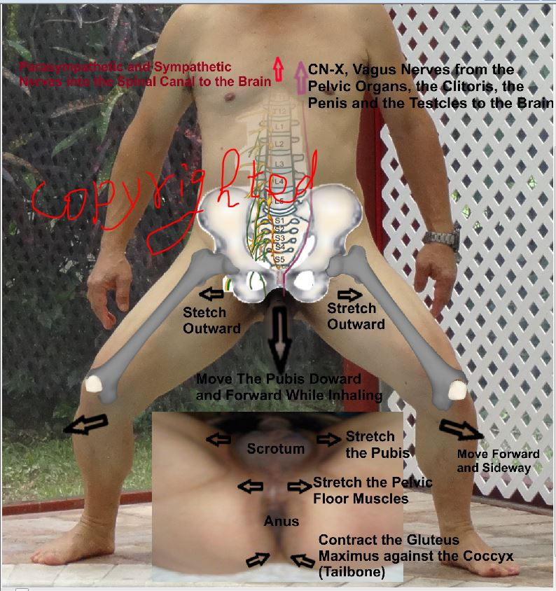 Men having sex with midget woman