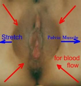 Psy-engorment bloodflow