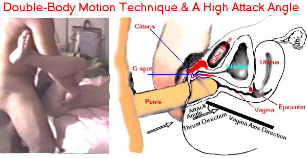 ... attack angle positions (served as 2-point excitation on the G-spot and ...